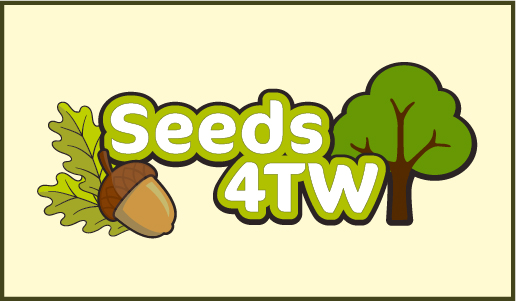 Gather seeds to grow trees for the future