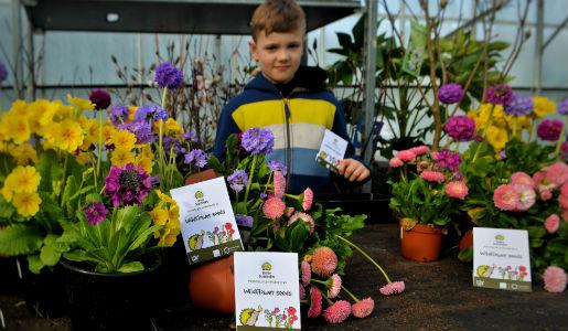 Telford & Wrekin Council helping to create a nectar network